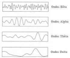 ondes-cerebrales