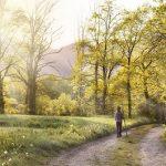 Être serein - Marcher dans la nature