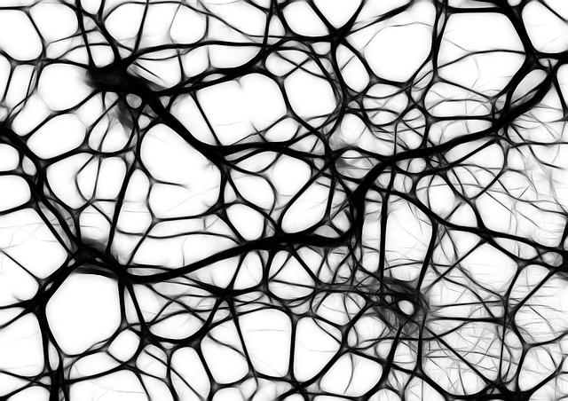 chemin-neuronal