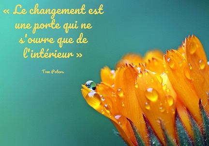 citation inspirante changement